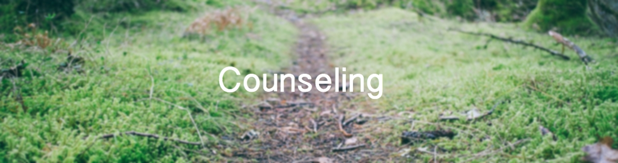 counselingheader
